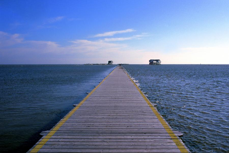 Steg am Meer, wooden way at the sea