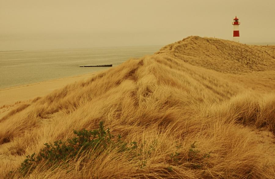 Sylt in Sepia
